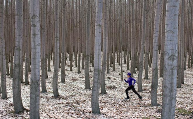 5 astuces pour courir quand il fait froid - Runner s World 0515bd9848e